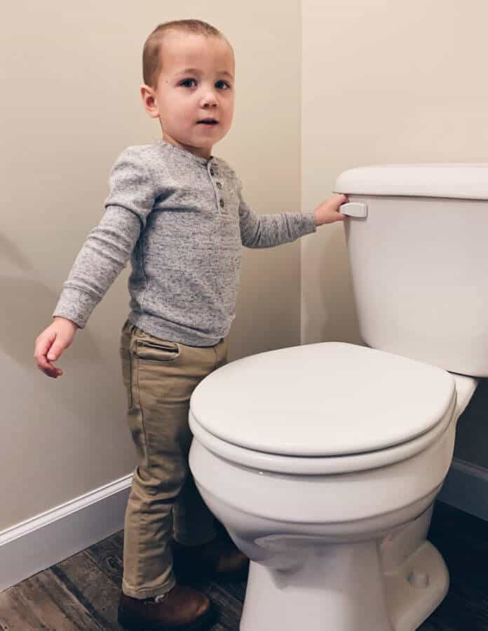 terrible two potty training